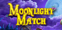 Moonlight Match: Eine zauberhafte Nacht
