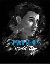Tickets und Karten für  $artistName  Shawn Mendes World Tour Tickets